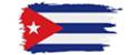 Salsa flag